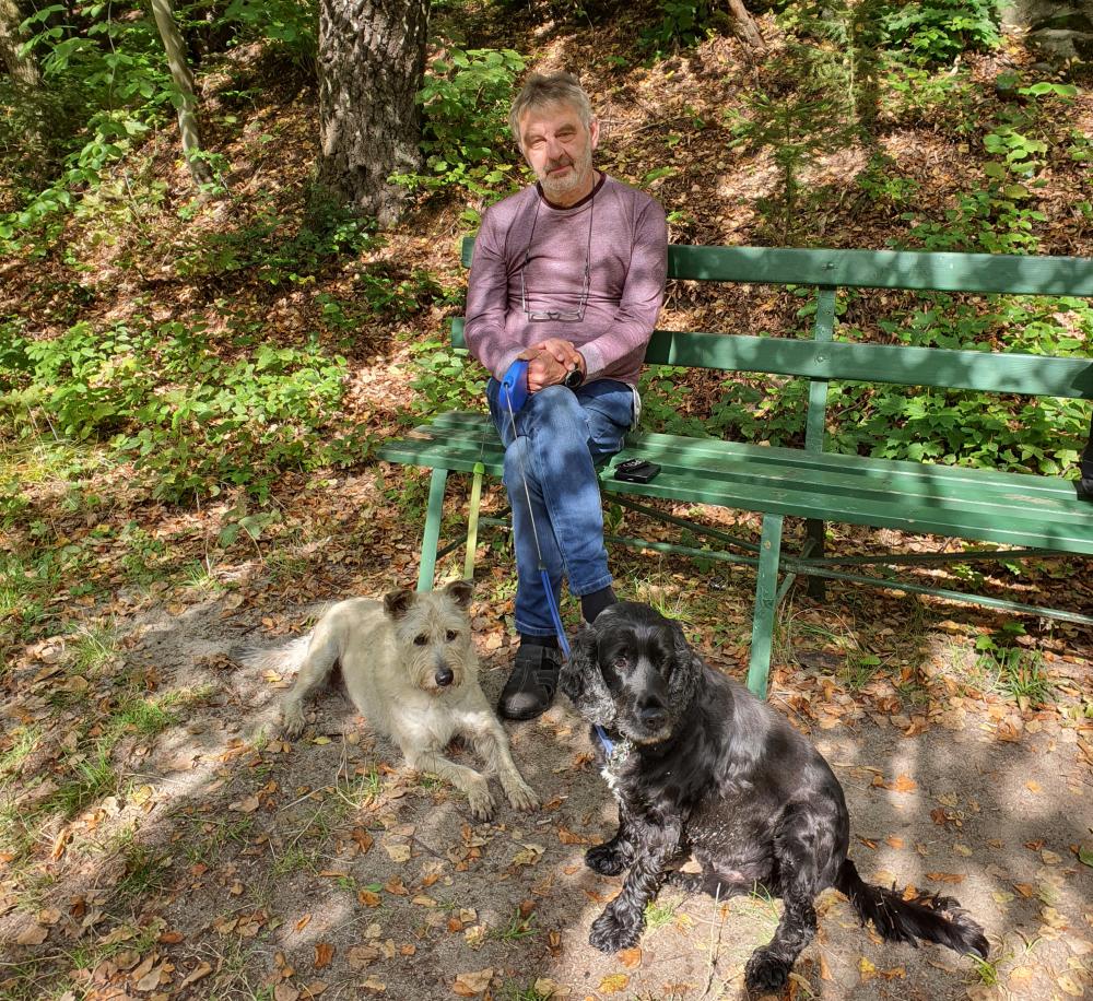 Bohusz z psami zdjęcie